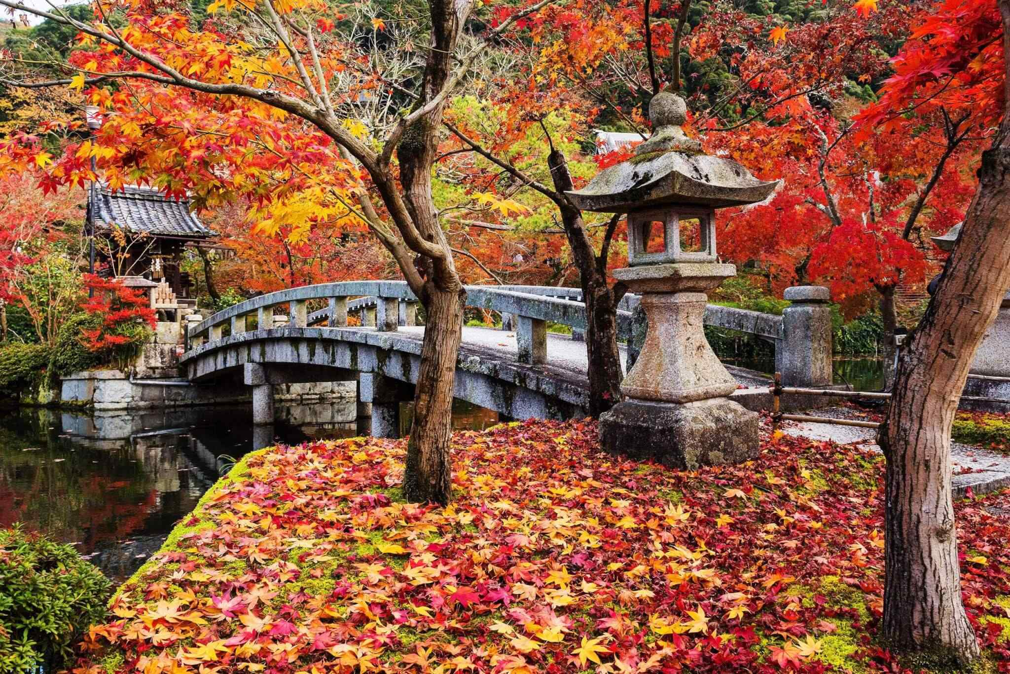destination-kyoto-03