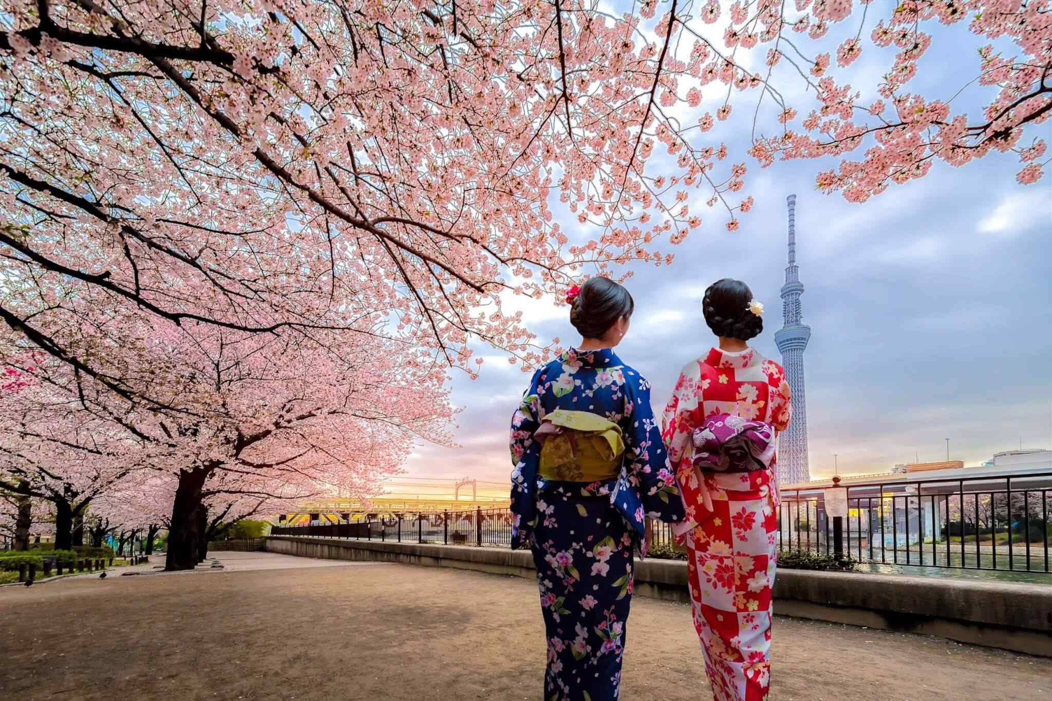 https://www.banitours.com/wp-content/uploads/2018/09/destination-tokyo-03.jpg